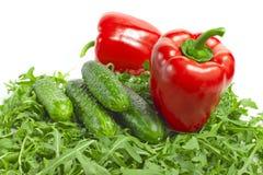 Овощи с салатом Стоковая Фотография