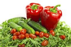 Овощи с салатом Стоковые Фото