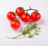 Овощи томата вишни с листьями укропа Стоковые Изображения
