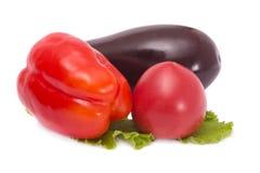 Овощи томат, баклажан и перец Стоковые Изображения