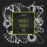 Овощи фермы вектора нарисованные рукой Квадратный состав границы Томат, лук, капуста, перец, лук-порей Стиль доски Стоковое Фото