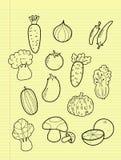 Овощи чертежа от руки. иллюстрация штока