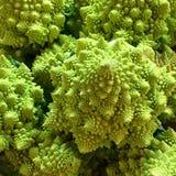 Овощи чужеземца Стоковое фото RF