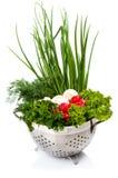 овощи шара свежие Стоковые Изображения