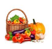 овощи mediterran ингридиентов кухни корзины необходимые свежие полные иллюстрация вектора