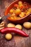 овощи stew страны Стоковое Фото