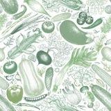 Овощи vector безшовная картина Ретро выгравированная предпосылка стиля иллюстратор иллюстрации руки чертежа угля щетки нарисованн стоковые фотографии rf