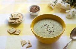 Овощной суп при брокколи, который служат с шутихами, маслом льняного семени и семенами стоковое фото