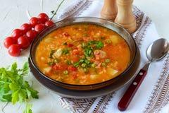 Овощной суп с рисом стоковая фотография