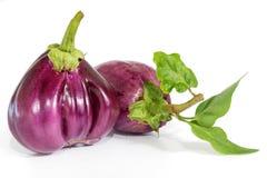 Овощ баклажана или aubergine на белизне Стоковые Фотографии RF