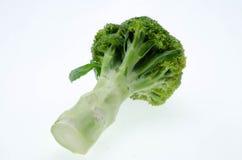 Овощ брокколи изолированный на белой предпосылке Стоковое Изображение RF