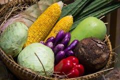 Овощ в корзине Стоковые Фото