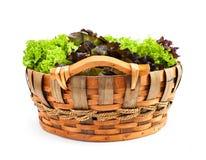 Овощ в корзине Стоковые Изображения RF