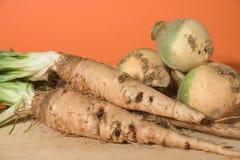Овощ зимы Стоковые Фотографии RF