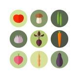 овощ Комплект значка Стоковая Фотография RF
