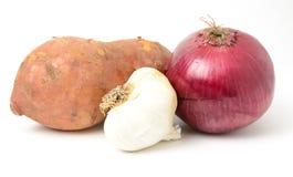 Овощ корня Стоковая Фотография RF