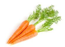 Овощ моркови при листья изолированные на белой предпосылке Стоковое Фото