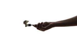 Овощ на вилке в женской руке Стоковые Фото