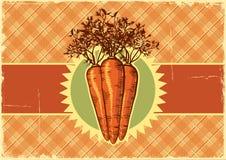 Предпосылка ярлыка Carrots.Vintage для конструкции Стоковые Изображения RF