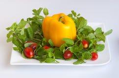 овощ расположения Стоковые Фотографии RF