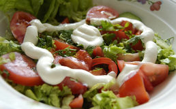 овощ салата Стоковое Изображение RF