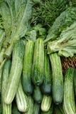 овощ салата еды свежий японский Стоковые Фото