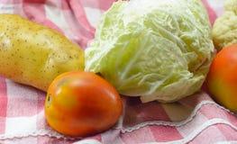 овощ салата еды свежий японский Стоковое фото RF