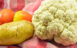овощ салата еды свежий японский Стоковые Изображения