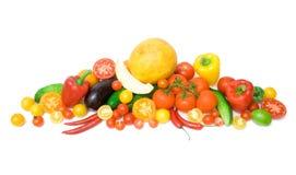 овощ собрания Стоковая Фотография RF