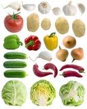 овощ собрания Стоковые Изображения