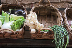 овощ стойки Стоковое фото RF