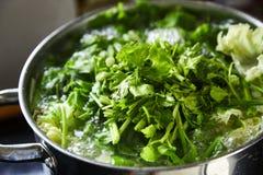 Овощ супа и семенить свинина Стоковые Фотографии RF