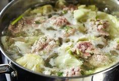 Овощ супа и семенить свинина Стоковое Изображение