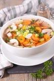 овощ супа макроса фокуса отмелый стоковые изображения