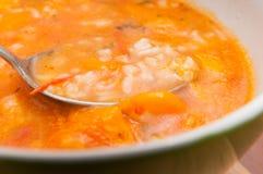 овощ супа макроса фокуса отмелый стоковое фото rf