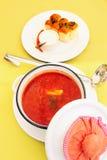 овощ супа свеклы красный Стоковая Фотография RF