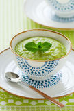 овощ супа толщиной стоковое фото