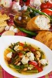 овощ супа цыпленка традиционный Стоковое Фото