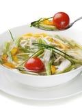 овощ супа цыпленка шара Стоковая Фотография RF