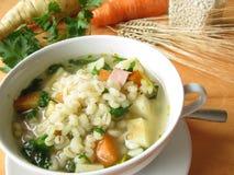 овощ супа Стоковая Фотография
