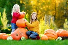 2 довольно маленьких сестры имея потеху совместно на заплате тыквы Стоковое фото RF
