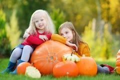 2 довольно маленьких сестры имея потеху совместно на заплате тыквы Стоковое Изображение RF