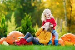 2 довольно маленьких сестры имея потеху совместно на заплате тыквы Стоковая Фотография RF