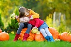 2 довольно маленьких сестры имея потеху совместно на заплате тыквы Стоковое Изображение