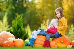 2 довольно маленьких сестры имея потеху совместно на заплате тыквы Стоковые Фото