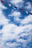 Овсянка лета Стоковая Фотография RF