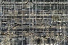 Овсянка и леса конструкции стоковое изображение rf