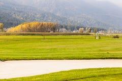 ловушка песка гольфа курса Стоковая Фотография RF
