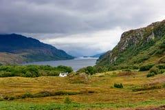 Овца озера в Wester Ross, Шотландии Стоковые Фото