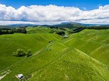 Овцы вида с воздуха обрабатывают землю холм, Rotorua, Новая Зеландия Стоковые Изображения